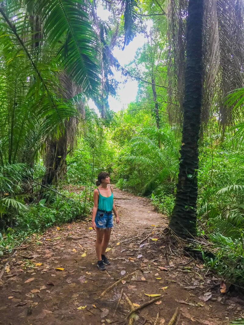 Walking in Hacienda Baru, a must do in Manuel Antonio guide