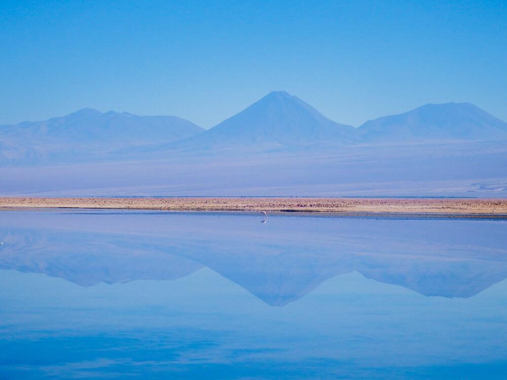 Laguna Chaxa - San Pedro de Atacama guide