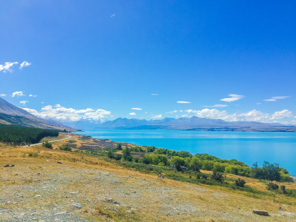 Lake Pukaki and Mount Cook are both must see places in New Zealand