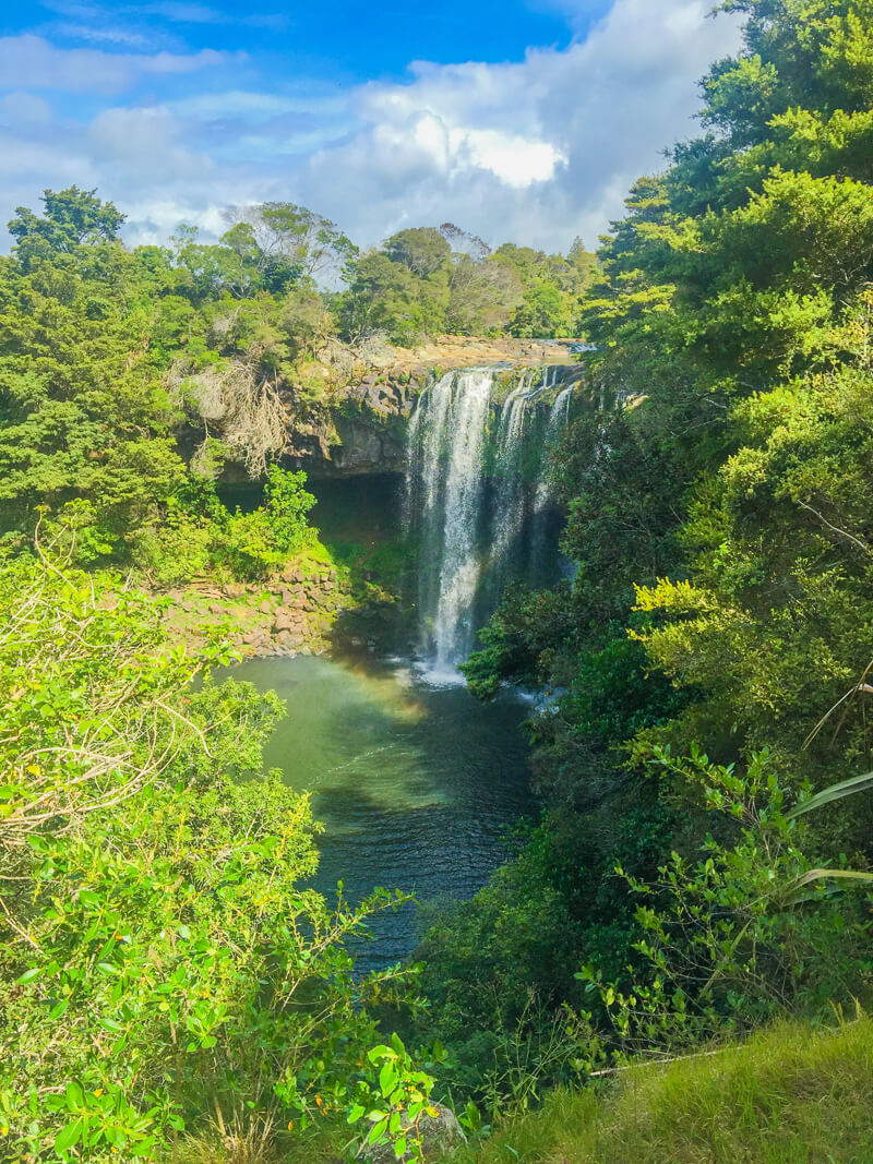 Whangarei falls near Auckland - a must see place in New Zealand