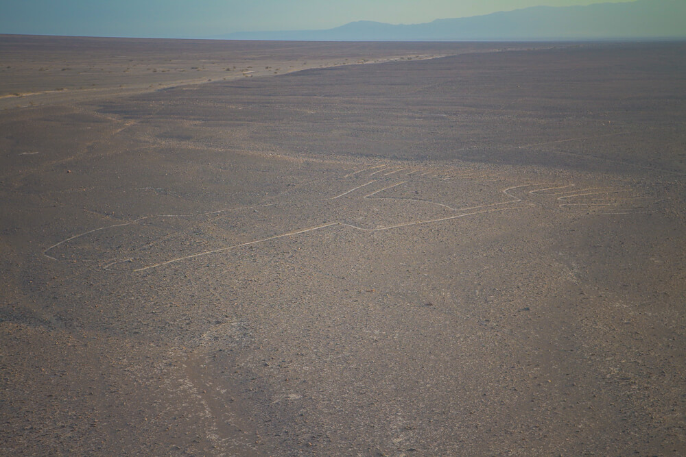 One of the famous Nazca Lines - fourth stop on your 14 day Peru itinerary