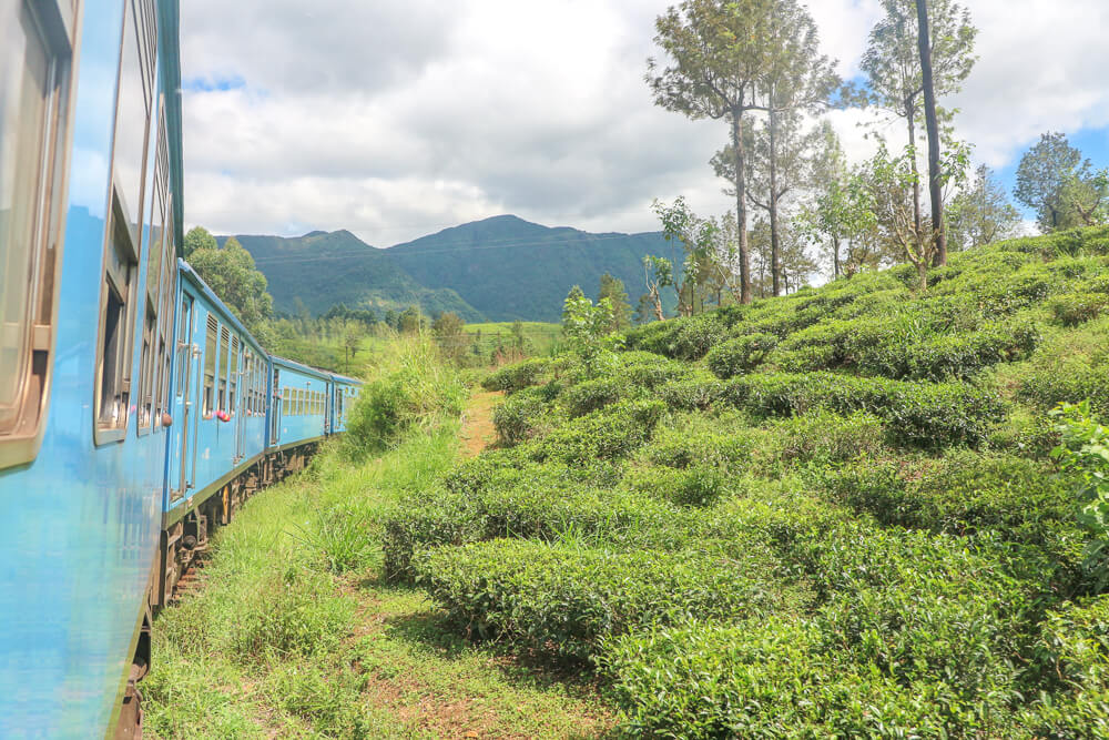 We recommend taking the train to Nuwara Eilya in this guide!