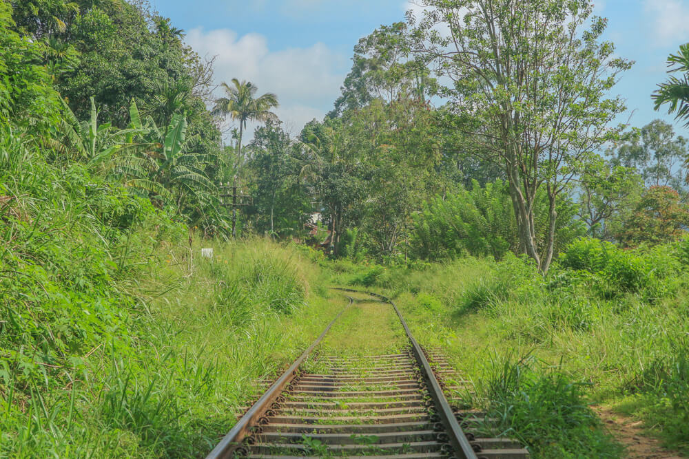 train tracks in public transport in Sri Lanka article