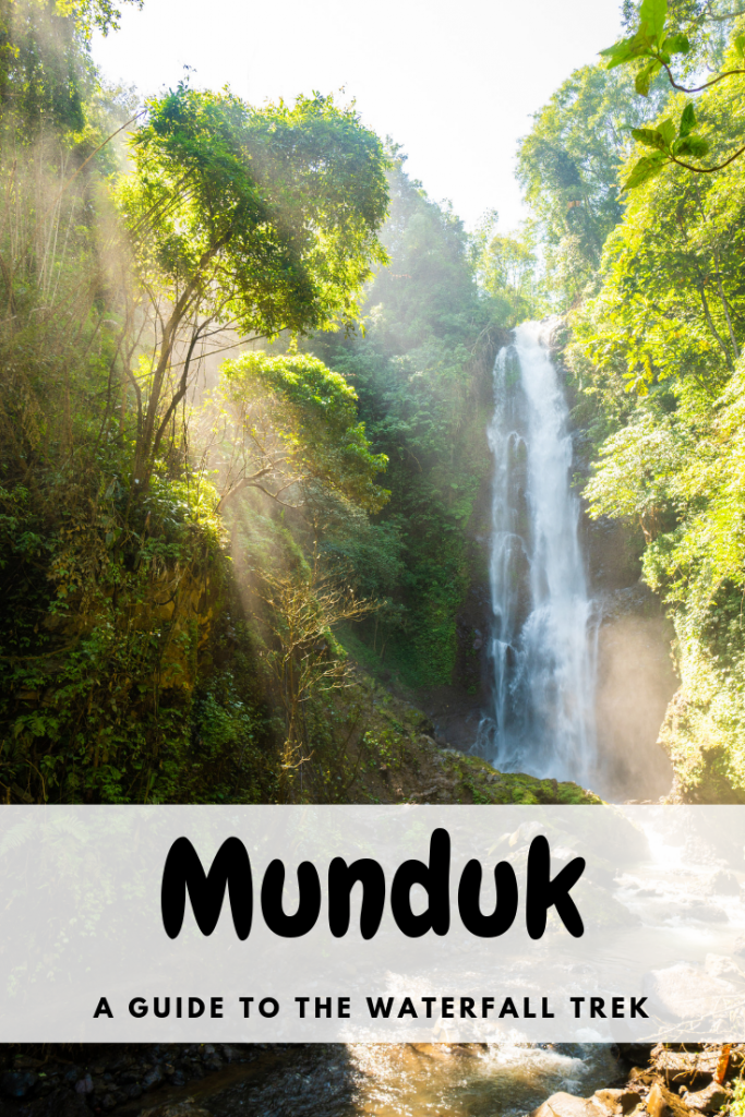 One of the best things to do in Munduk is the waterfall trek. This 3 hour hike involves visiting 3 waterfalls, Laangtian Melanting, Red Coral and Munduk/Golden Valley waterfall. These waterfalls are a lot less visited then other ones in Bali. For nature and waterfall lovers this trek is a must do! Read more here for how to do it plus tips of the Munduk waterfall hike! #bali #munduk #waterfall