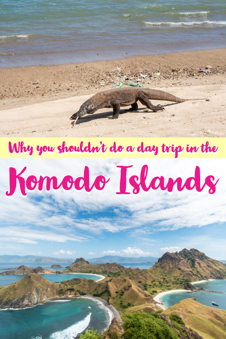 One of the best adventures you can have in Indonesia is in Komodo National Park - famed for its pink beach, komodo dragons, secluded islands and amazing diving. This national park is not one to be missed from your travels! A lot of things went wrong on our trip, find out what happened and how you can plan your Komodo trip better with this guide! #indonesia #asia #komodo