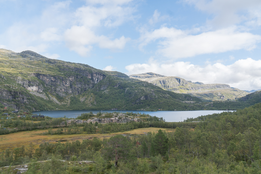 Lake Reinungavatnet as seen from the Flam Railway, Norway